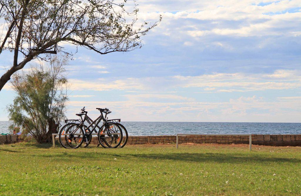 Cycling along the coast
